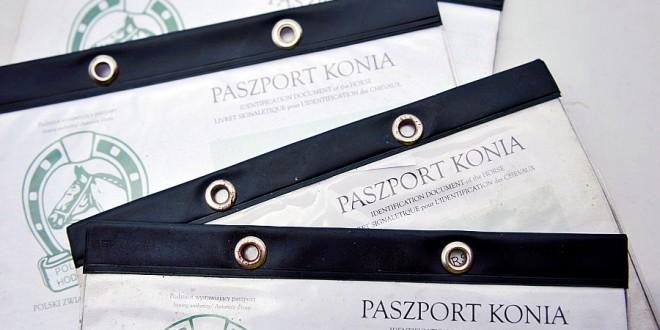 O paszportach i czipach